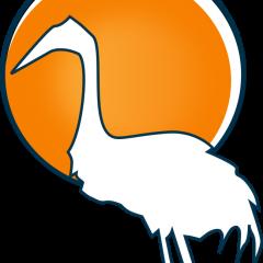 Average Bird